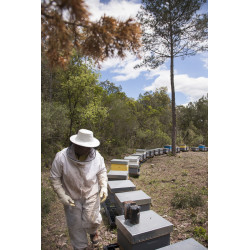 Miel Ecológica Cap de Creus